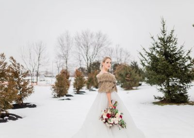 bride-snowy
